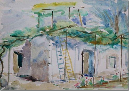 Ladder under the Vine - Echelle sous la Vigne