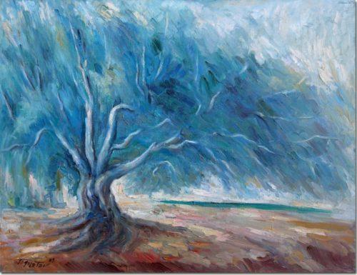 The Olive Tree in the Storm - L'Olivier et la Tempête