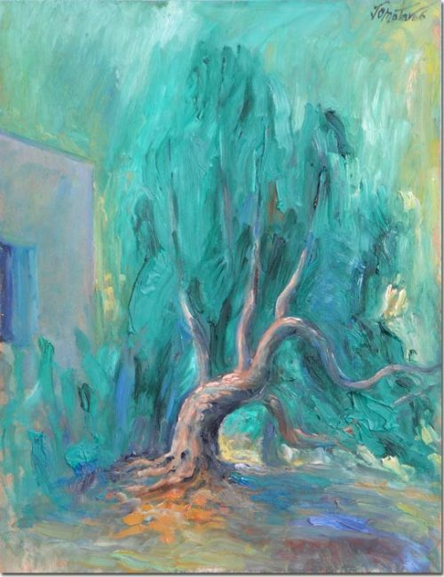 The Witness of a Tree - L'arbre témoin