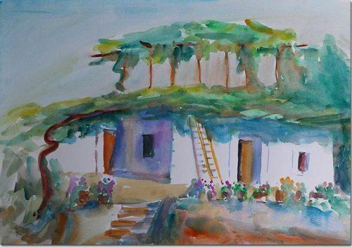 The Hundred-year-old Vine - La vigne centenaire du village